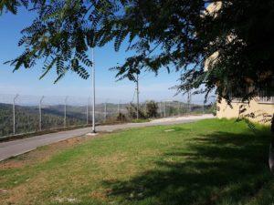 Utsikten fra hagen